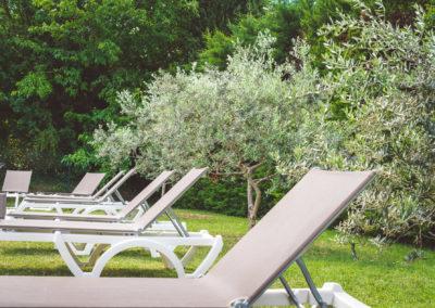 a l'ombre de l'olivier en provence